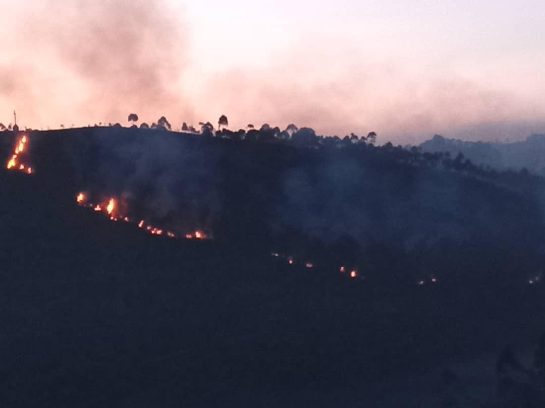 Butembo:  Un feu de brousse embrase une partie du Mont Tabor sur la concession de l'UCG