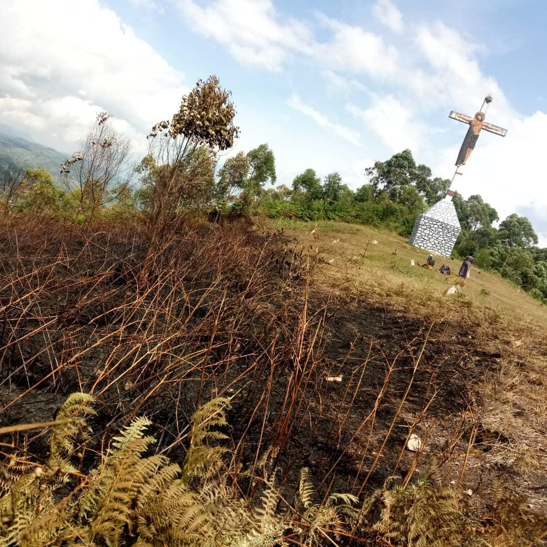 Butembo : Selon une étude 11 hectares de la concession de l'UCG ont été touchés lors du dernièr incendie sur le Mont Tabora