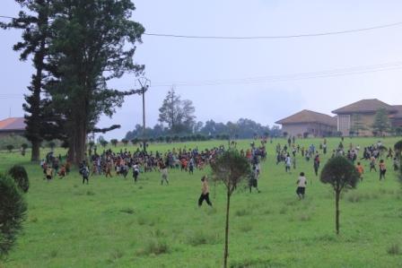 Butembo : chasses aux sauterelles, des prédateurs et les piégeurs en profiteraient pour abuser des femmes et des jeunes filles (service de genre)